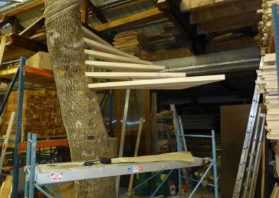 escalier-bois-arbre